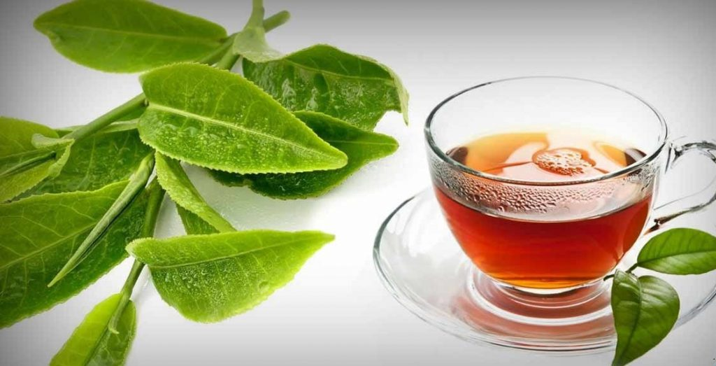 Với lá ổi được sử dụng tốt nhất bạn dưới dạng trà